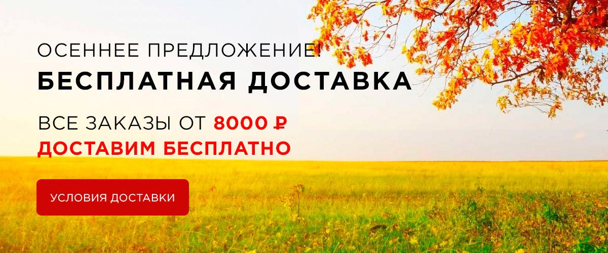 Акция: бесплатная доставка при покупке от 8000 рублей