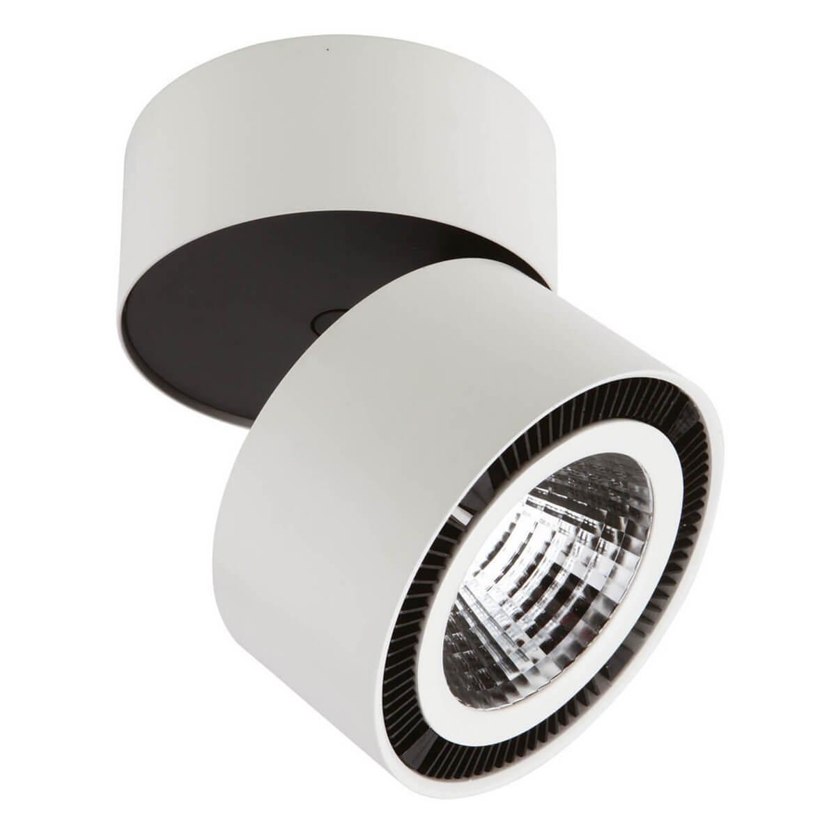 Фото Накладной светильник Lightstar Forte 214850