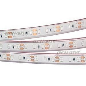 Лента светодиодная (5 м) Arlight 14950