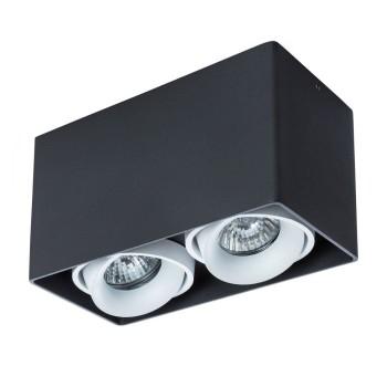 Потолочный светильник Arte Lamp Pictor A5654PL-2BK