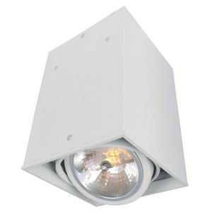 Накладной светильник Arte Lamp Cardani A5936PL-1WH