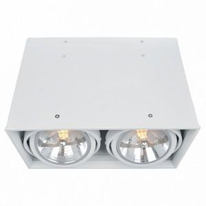 Накладной светильник Arte Lamp Cardani A5936PL-2WH