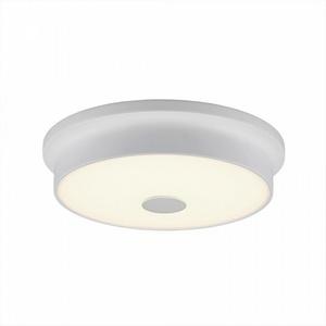 Накладной светильник Citilux Фостер CL706220