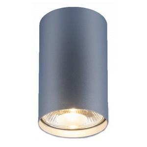Накладной светильник Elektrostandard 1083 a036693