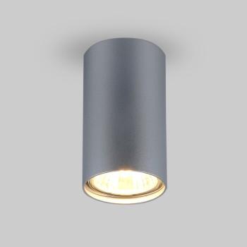 Накладной светильник Elektrostandard 1081 (5257) GU10 SL серебряный