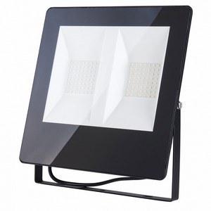 Настенно-наземный прожектор Elektrostandard 11 Прожектор 011 FL LED 100W 6500K IP65