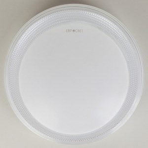 Светодиодный потолочный светильник 40012/1 LED белый