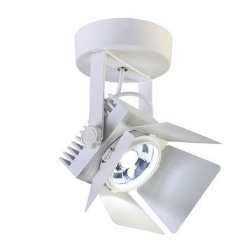 Настенно-потолочный прожектор Favourite Projector 1771-1U