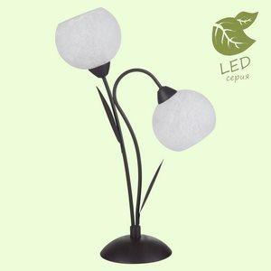 Настольная лампа декоративная Lussole Bagheria GRLSF-6294-02