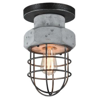 Накладной светильник Lussole Loft LSP-9701