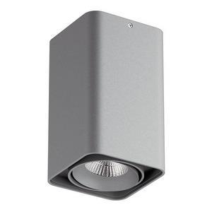 Накладной светильник Lightstar Monocco 52139