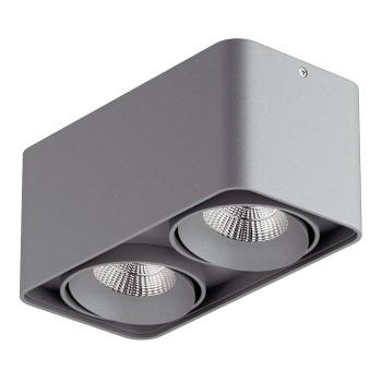 Накладной светильник Lightstar Monocco 212529