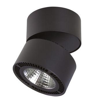 Накладной светильник Lightstar Forte 214817