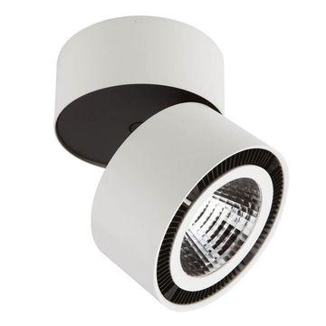 Светильник на штанге Lightstar Forte Muro 214830