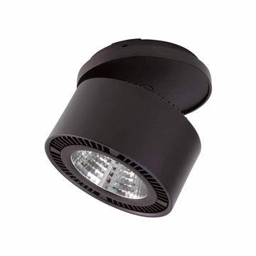Спот Lightstar Forte 214847