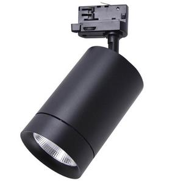 Светильник на штанге Lightstar Canno 303574