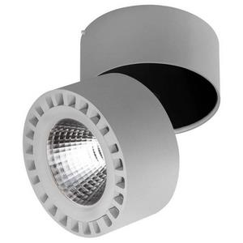 Светильник на штанге Forte 381394
