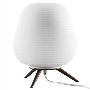 Настольная лампа декоративная Lightstar Arnia 805911