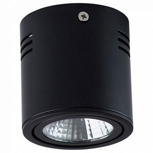 Накладной светильник MW-Light Круз 2 637014201