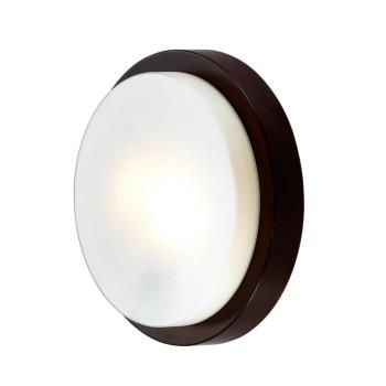 дополнительное изображение Накладной светильник Odeon Light Holger 2744/2C