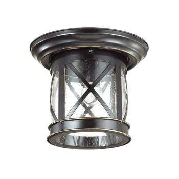 Накладной светильник Odeon Light Sation 4045/1C