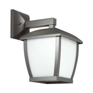 Светильник на штанге Odeon Light Tako 4051/1W