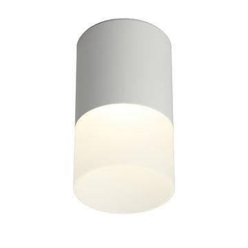 Светильник потолочный Omnilux Ercolano OML-100009-05