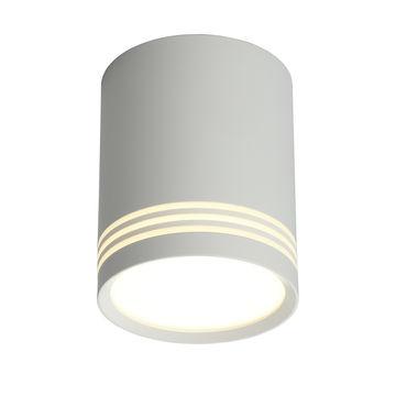 Светильник потолочный Omnilux Fortezza OML-100109-12