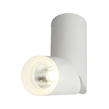 Светильник потолочный Omnilux Ultimo OML-100209-10