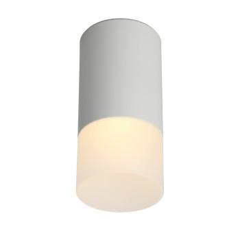 Светильник потолочный Omnilux Lucido OML-100609-01