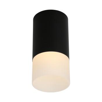 Светильник потолочный Omnilux Lucido OML-100619-01