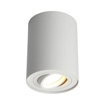 Светильник потолочный Omnilux Pantaleo OML-101009-01