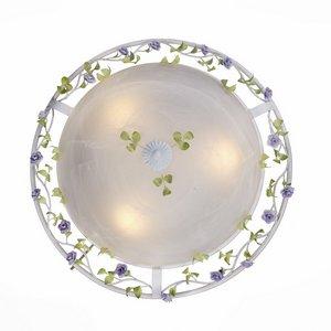 Накладной светильник ST-Luce Fiori SL695.502.03