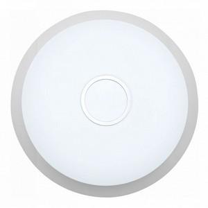 Накладной светильник ST-Luce Funzionale SLE350.102.01