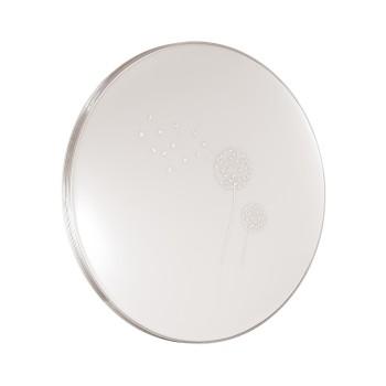 Настенно-потолочный светильник  Sonex SN_3005_EL AIRITA