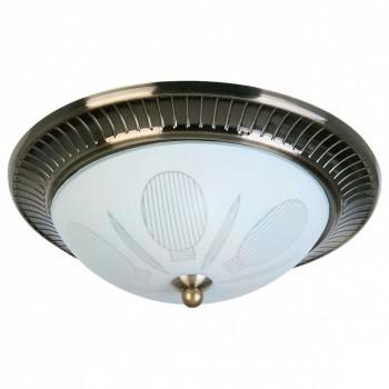 Накладной светильник TopLight Fae TL5060Y-02AB